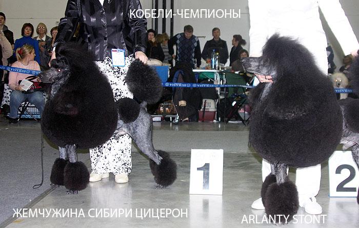 28champ_k3.jpg
