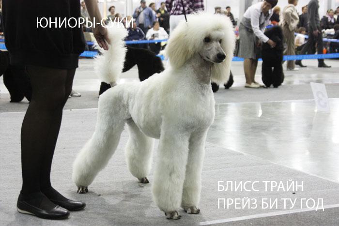 15uni_s_slava.jpg